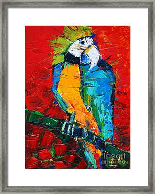 Coco The Talkative Parrot Framed Print by Mona Edulesco