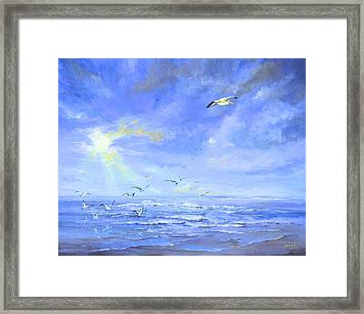 Cocoa Beach Birds Framed Print