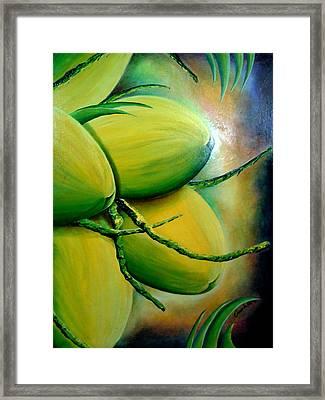 Coconut In Bloom Framed Print