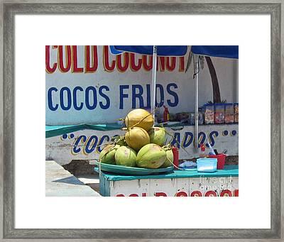 Framed Print featuring the photograph Coconuts - Mazatlan by Cheryl Del Toro