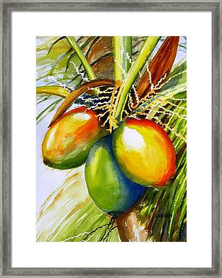 Coconuts Framed Print