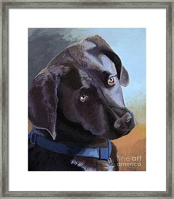 Coco's Portrait Framed Print