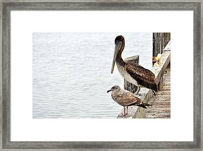 Framed Print featuring the photograph Coexist by AJ  Schibig