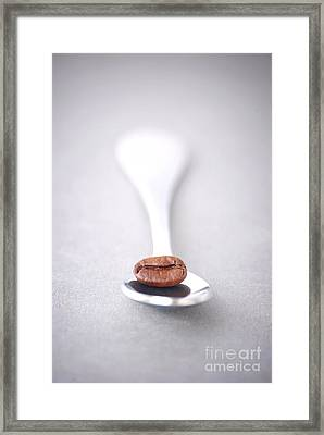 Coffee Bean Framed Print by HD Connelly
