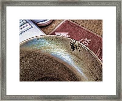 Coffee Cup Spider Fly Oh My Framed Print