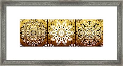 Coffee Flowers Medallion Calypso Triptych 2  Framed Print by Angelina Vick