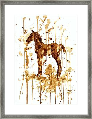 Coffee Foal Framed Print by Zaira Dzhaubaeva