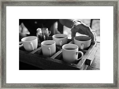 Coffee Tasting - Bali Framed Print by Matthew Onheiber
