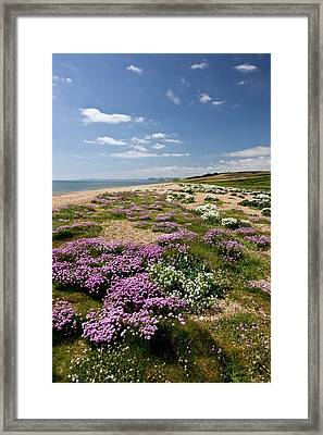 Cogden Beach Framed Print by Bob Gibbons