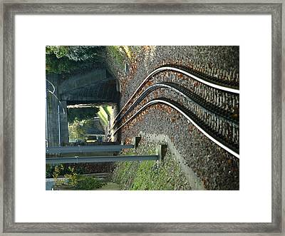 Cogs Of Life Framed Print by Randall Slinkard