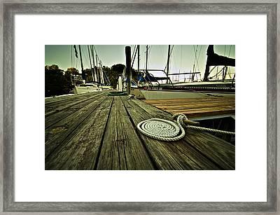 Coiled  Framed Print