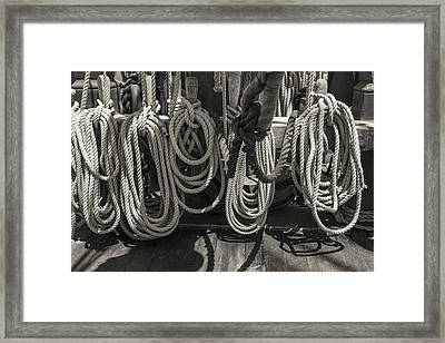 Coiled Black And White Sepia Framed Print by Scott Campbell