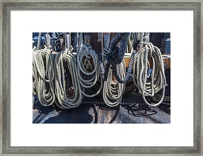 Coiled Framed Print by Scott Campbell