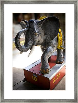 Coin Operated Elephant Framed Print by Marilyn Hunt