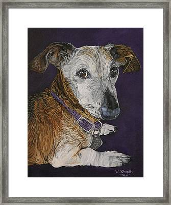 Framed Print featuring the painting Colbi by Wendy Shoults