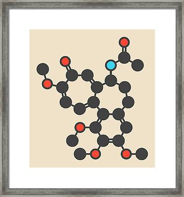 Colchicin Gout Drug Molecule Framed Print by Molekuul