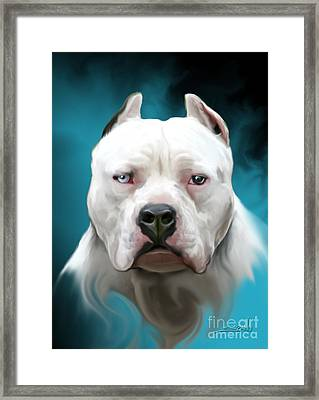 Cold As Ice- Pit Bull By Spano Framed Print by Michael Spano