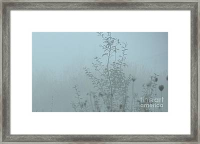 Cold Blues Framed Print