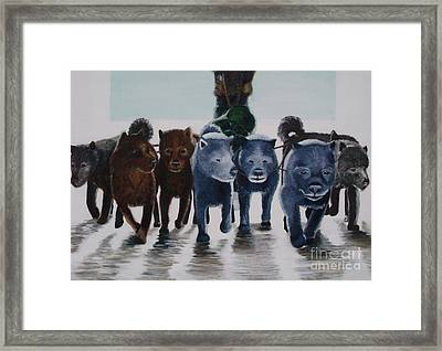 Cold Climates No 1 Framed Print by Lisbet Damgaard
