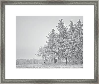 Cold Lace Framed Print by Odd Jeppesen