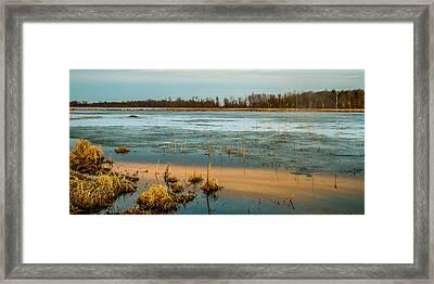 Cold Lake Framed Print by Bruno Santos