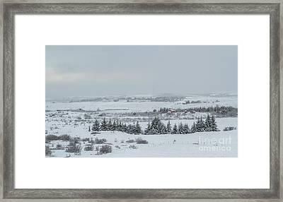 Cold Light Framed Print