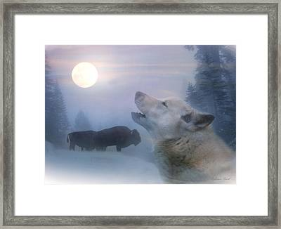 Cold Moon Framed Print by Stephanie Laird