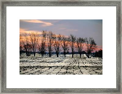 Framed Print featuring the photograph Cold Morning Treeline by Kimberleigh Ladd