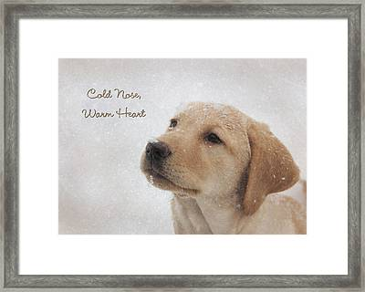 Cold Nose Warm Heart Framed Print by Lori Deiter