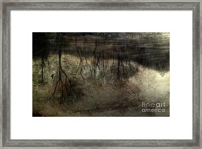 Cold Reflection 2 Framed Print