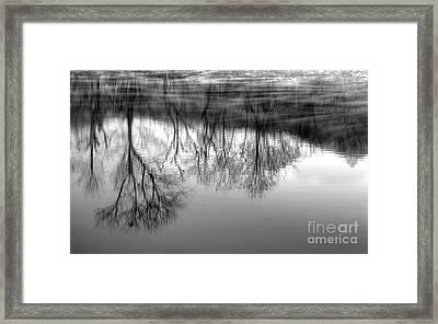 Cold Reflection Framed Print