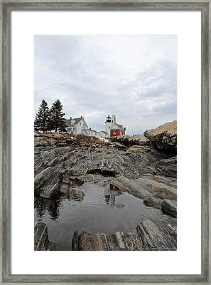 Cold Reflections Framed Print by Becca Brann