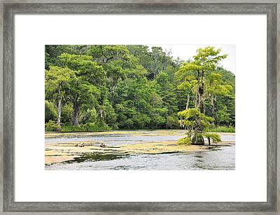 Cold River Runs Framed Print by Jan Amiss Photography