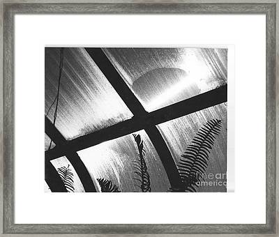 Cold Sun Framed Print