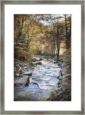 Cold Water Framed Print by Debra and Dave Vanderlaan