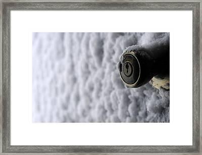 Cold Welcome Framed Print by Wanda Brandon
