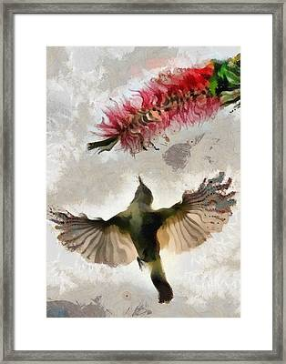 Framed Print featuring the painting Colibri by Georgi Dimitrov