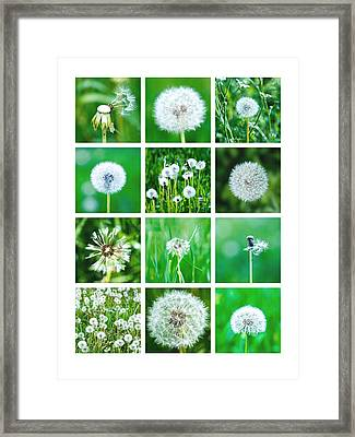 Collage June - Featured 3 Framed Print