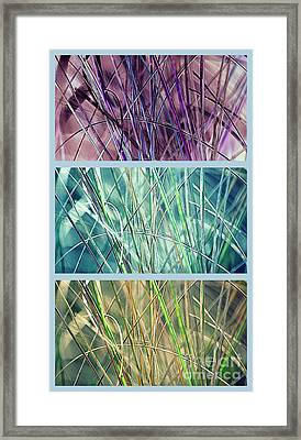 Collage Of See Grass Framed Print