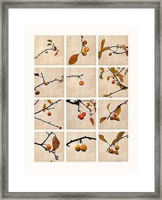 Collage Paradise Apple Framed Print by Alexander Senin