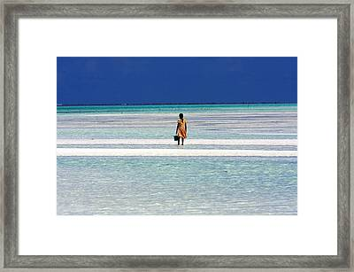 Collecting Clams In The Indian Ocean Framed Print