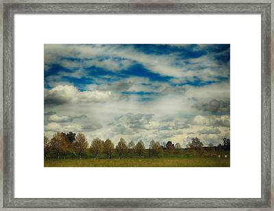 Collecting Thoughts Framed Print by Laurie Search