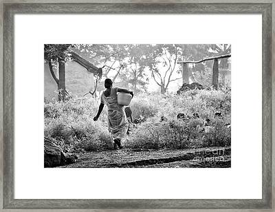Collecting Water Framed Print by Tim Gainey