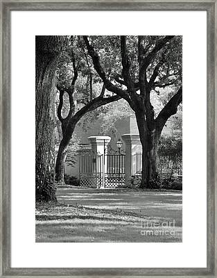 College Of Charleston Gate Framed Print