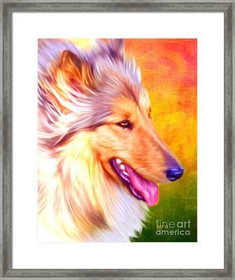 Collie Art Framed Print