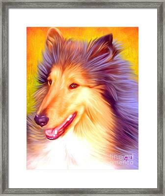 Collie Pet Art Framed Print