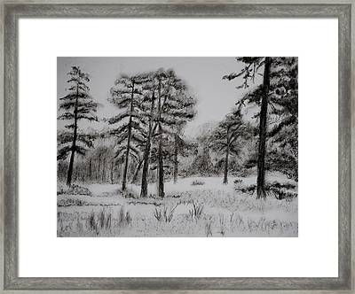 Colliers Mills Wildlife Area Framed Print by Diana Prout