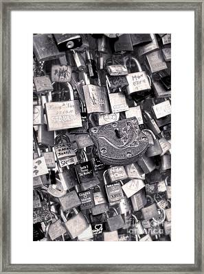 Cologne - Hohenzollern Bridge - Gypsy Locks - Black And White Framed Print by Gregory Dyer