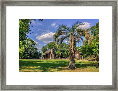 Colonial Paradise Framed Print