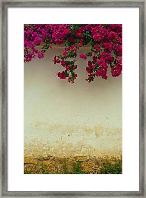 Colonial Wall With Flowers Framed Print